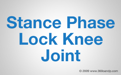 Stance Phase Lock Knee Joint